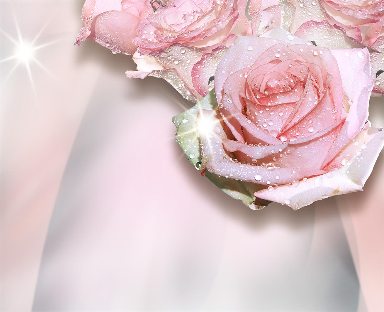 газели-автобусики выпускаются фотообои с изображением роз отметил
